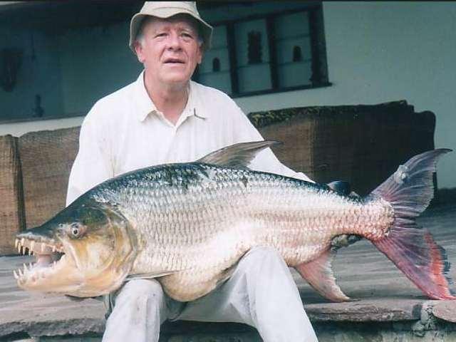 http://www.greatfish.twmail.net/image/gallerys/characin/goliath-fishing-jcpoiret.jpg